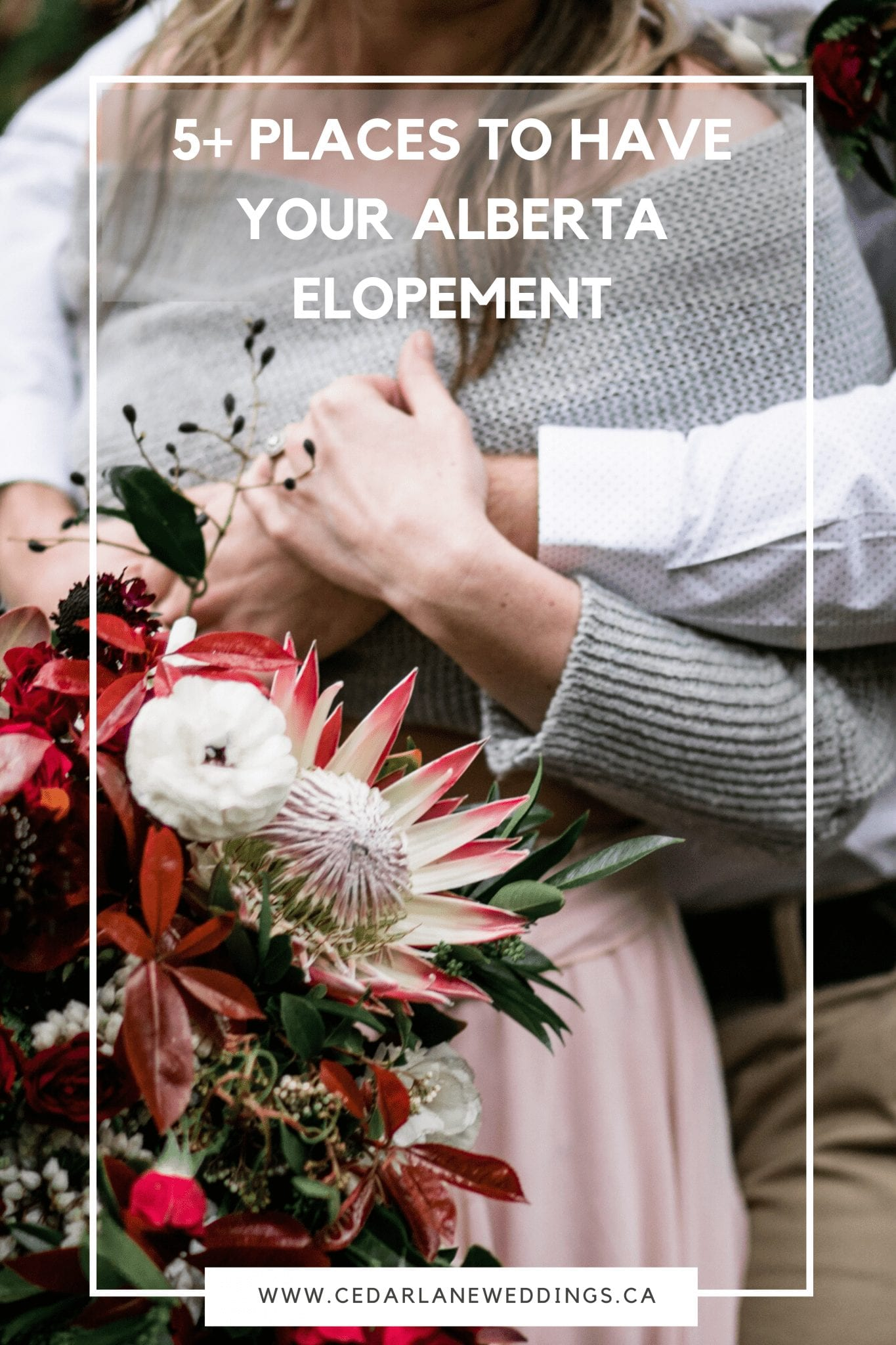 5+ Places to have your Alberta Elopement